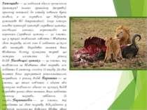 Хижацтво— це поїдання одним організмом (хижаком) іншого організму (жертви), ...