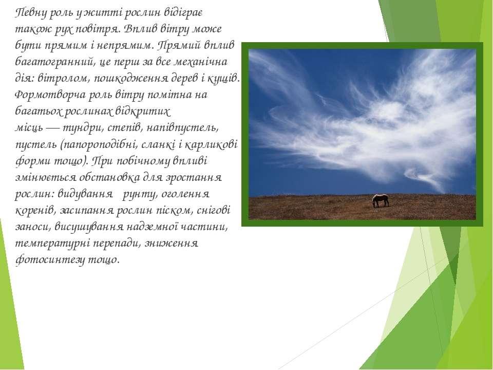 Певну роль у житті рослин відіграє також рух повітря. Вплив вітру може бути п...
