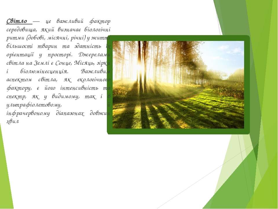 Світло — це важливий фактор середовища, який визначає біологічні ритми (добов...