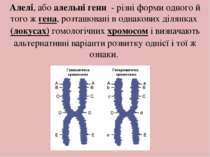 Алелі, абоалельні гени- різні форми одного й того жгена, розташовані в од...