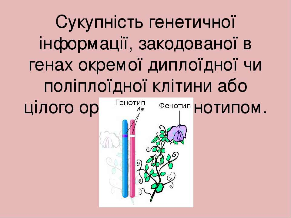 Сукупність генетичної інформації, закодованої в генах окремої диплоїдної чи п...