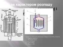 за характером розпаду ядерного палива (гомогенні і гетерогенні) Схематичне об...
