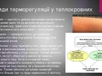 Види терморегуляції у теплокровних Ендотермія — здатність деяких організмів к...