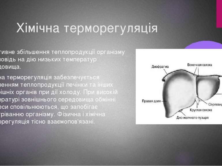 Хімічна терморегуляція Реактивне збільшення теплопродукції організму у відпов...
