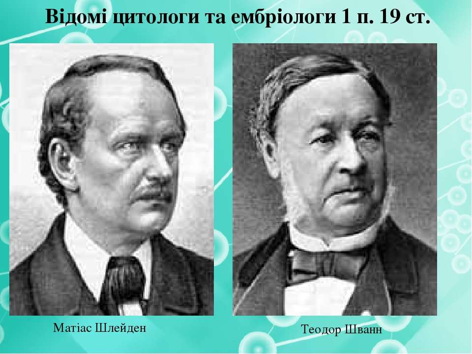 Відомі цитологи та ембріологи 1 п. 19 ст. Матіас Шлейден Теодор Шванн