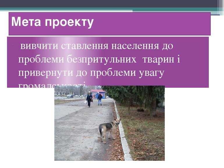 Мета проекту вивчити ставлення населення до проблеми безпритульних тварин і п...