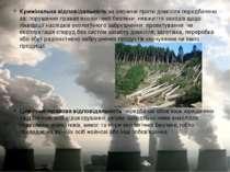 Джерела забруднення і основні види забруднення атмосфери. Охорона атмосферног...
