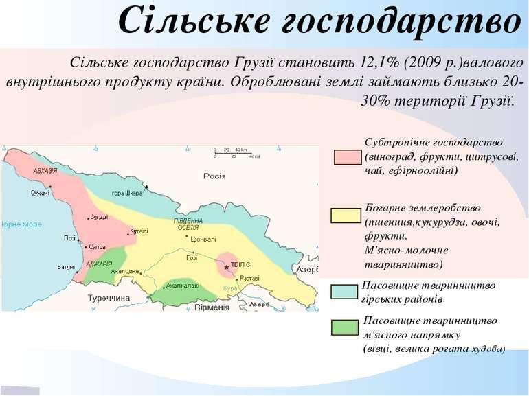 Сільське господарство Сільське господарствоГрузії становить 12,1% (2009р.)в...