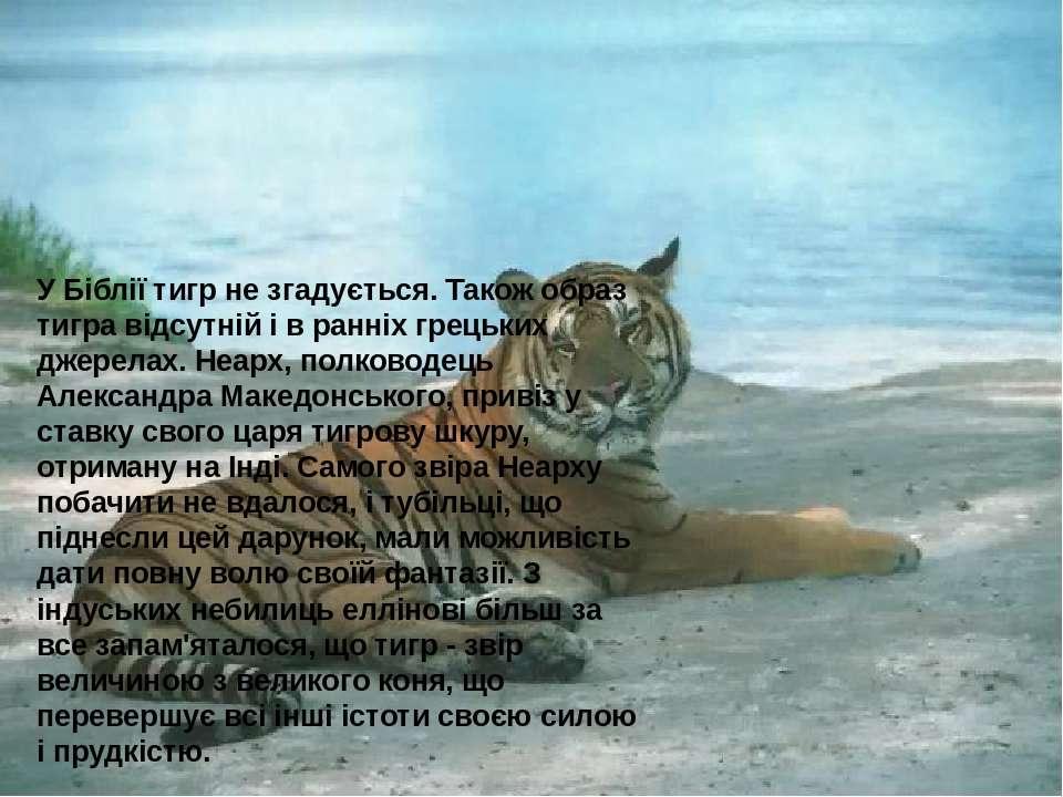 У Біблії тигр не згадується. Також образ тигра відсутній і в ранніх грецьких ...