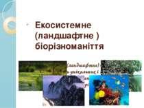 Екосистемне (ландшафтне ) біорізноманіття Екосистемне (ландшафтне) біорізнома...