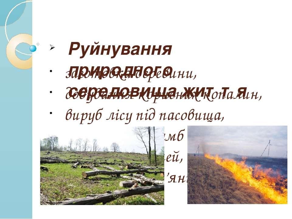 Руйнування природного середовища життя заготовка деревини, добування корисних...