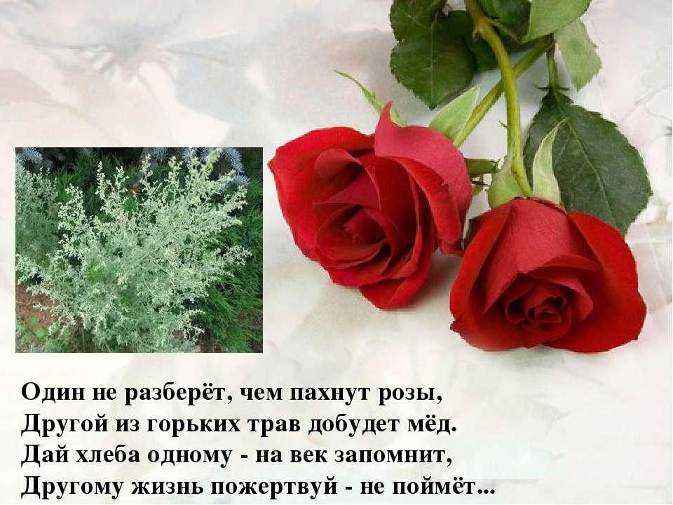 Один не разберёт, чем пахнут розы, Другой из горьких трав добудет мёд. Дай хл...