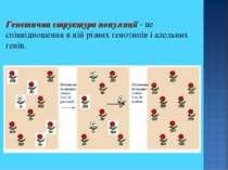 Генетична структура популяції - це співвідношення в ній різних генотипів і ал...