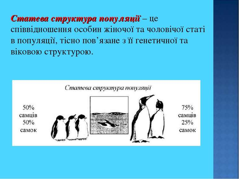 Статева структура популяції – це співвідношення особин жіночої та чоловічої с...