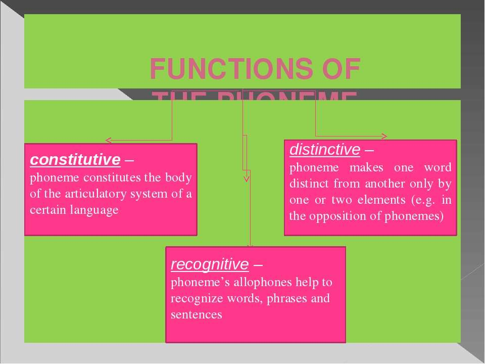 FUNCTIONS OF THE PHONEME constitutive – phoneme constitutes the body of the a...