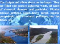 The Dnipro and others rivers are in danger. They are filled with poison: indu...