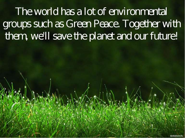 The world has a lot of environmental groups such as Green Peace. Together wit...