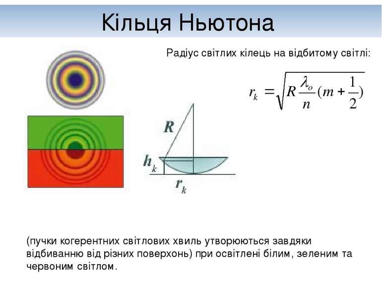 Кільця Ньютона (пучки когерентних світлових хвиль утворюються завдяки відбива...