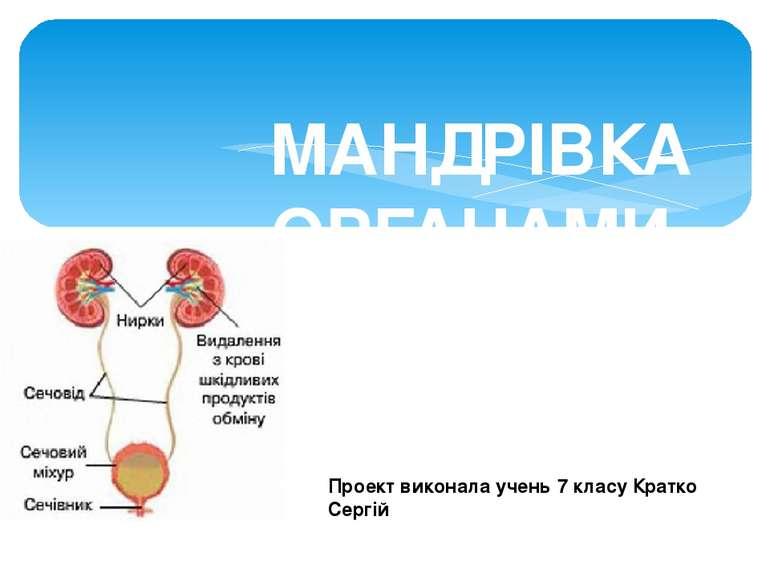 МАНДРІВКА ОРГАНАМИ ВИДІЛЕННЯ Проект виконала учень 7 класу Кратко Сергій
