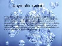 Кругообіг кисню. У кількісному відношенні головною складовою живої матерії є ...