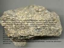 Вапняк – осадова порода, складена переважно карбонатом кальцію – кальцитом. З...
