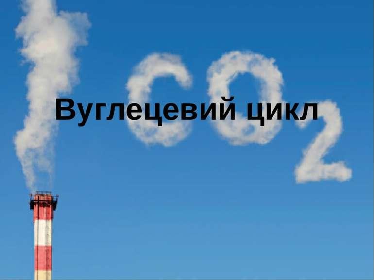 Вуглецевий цикл