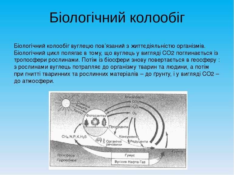 Біологічний колообіг Біологічний колообіг вуглецю пов'язаний з життєдіяльніст...