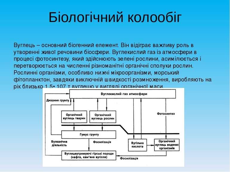 Біологічний колообіг Вуглець – основний біогенний елемент. Він відіграє важли...