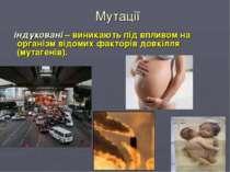 Мутації індуковані – виникають під впливом на організм відомих факторів дов...