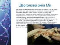 Двоголова змія Ми Ми - гримуча змія з рідкісною генетичною мутацією. У неї не...