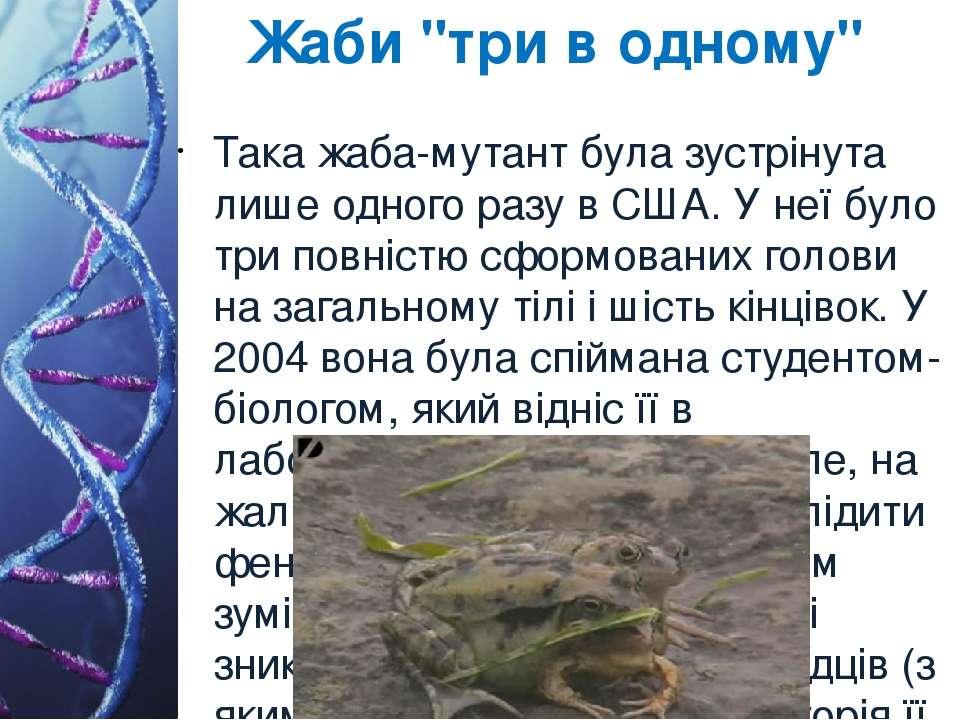 """Жаби """"три в одному"""" Така жаба-мутант була зустрінута лише одного разу в США. ..."""