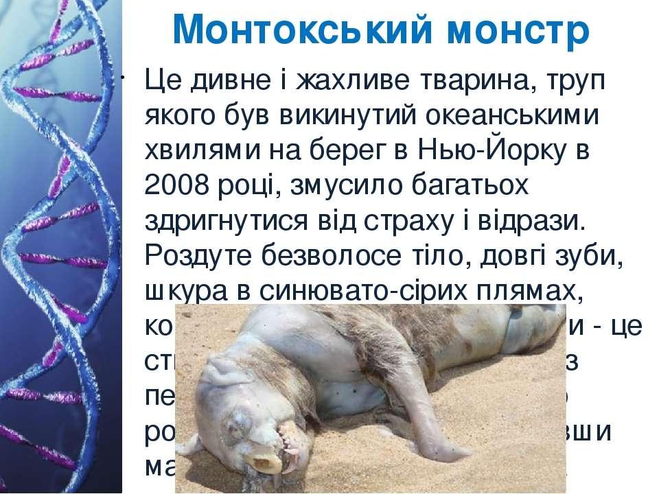 Монтокський монстр Це дивне і жахливе тварина, труп якого був викинутий океан...