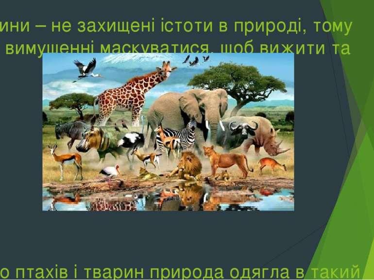 Тварини – не захищені істоти в природі, тому вони вимушенні маскуватися, щоб ...