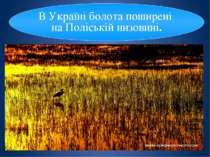 Наша країна - морська держава. Вона має вихід до Чорного й Азовського морів. ...