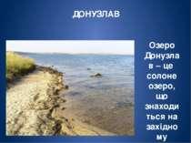 САСИК Найбільше озеро України за площею-майже 205 кв.км