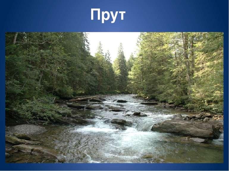 Тиса – притока Дунаю Тиса — річка Українських Карпат. Річка гірська, зі швидк...