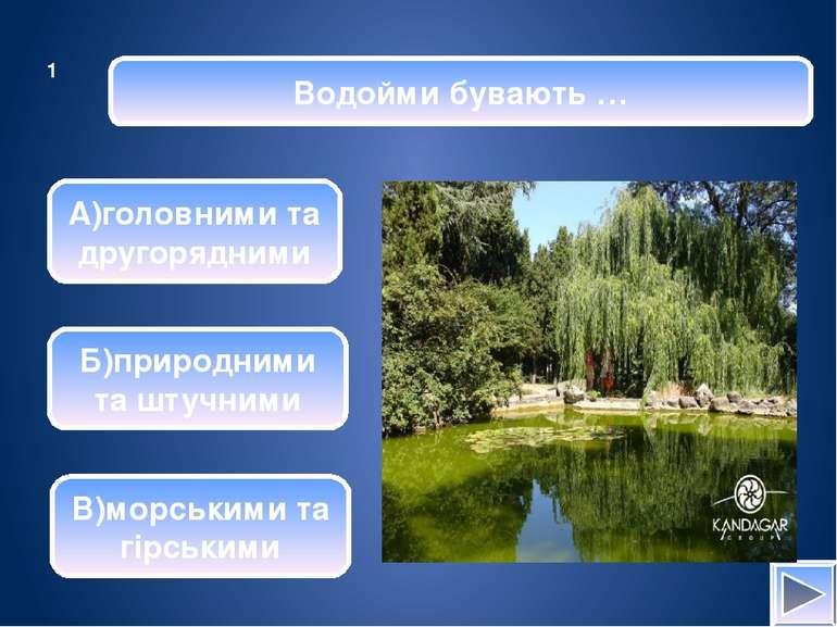 Витік річки – це … А)заглиблення, по якому вона тече Б)місце, де вона впа- да...