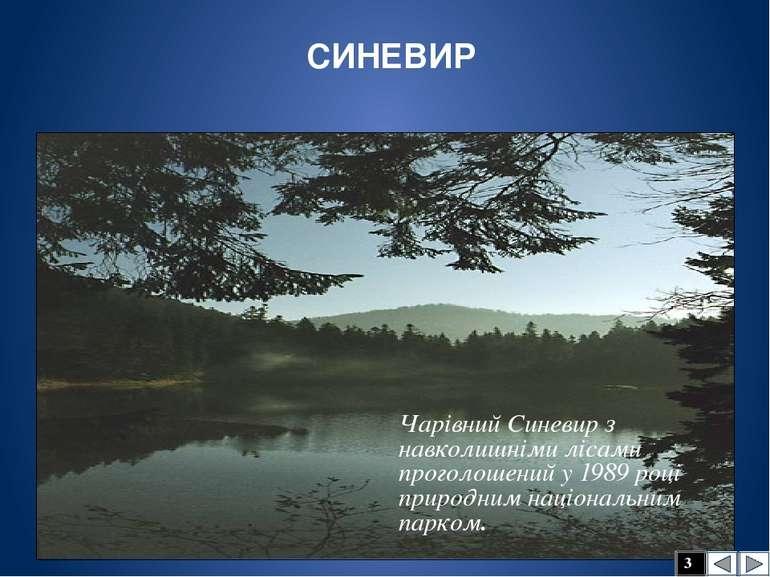 В Україні болота поширені на Поліській низовині.
