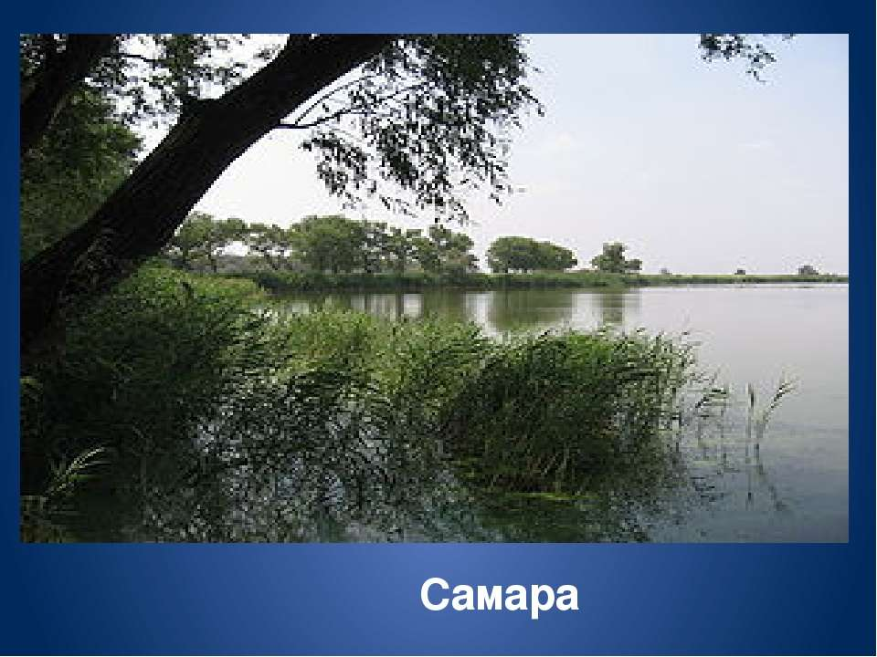 Найбільші праві притоки Дніпра Прип`ять, Тетерів, Інгулець.