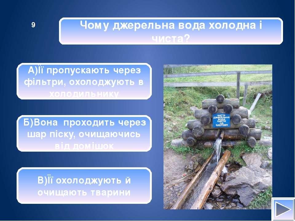 Природні водойми – це … А)джерела, ставки, водосховища Б)болота, ставки, моря...