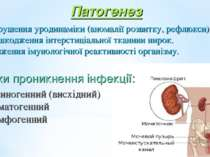 Патогенез Порушення уродинаміки (аномалії розвитку, рефлюкси). Пошкодження ін...