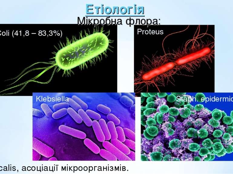 Етіологія Мікробна флора: E.Coli (41,8 – 83,3%) Proteus Klebsiella Staph. epi...