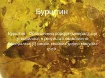 Бурштин Бурштин - Органогенна порода (мінерал), що утворилася в результаті ск...