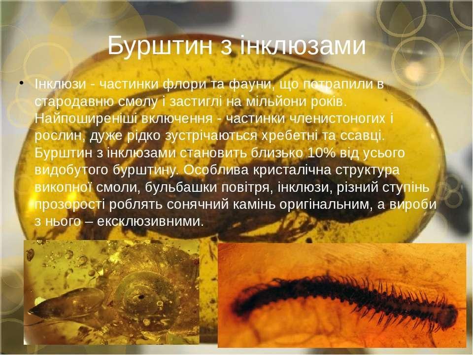 Бурштин з інклюзами Інклюзи - частинки флори та фауни, що потрапили в старода...