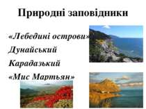 Природні заповідники «Лебедині острови» Дунайський Карадазький «Мис Мартьян»