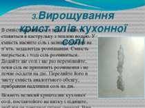 3.Вирощування кристалів кухонної солі В ємність наливається вода, і ємність с...