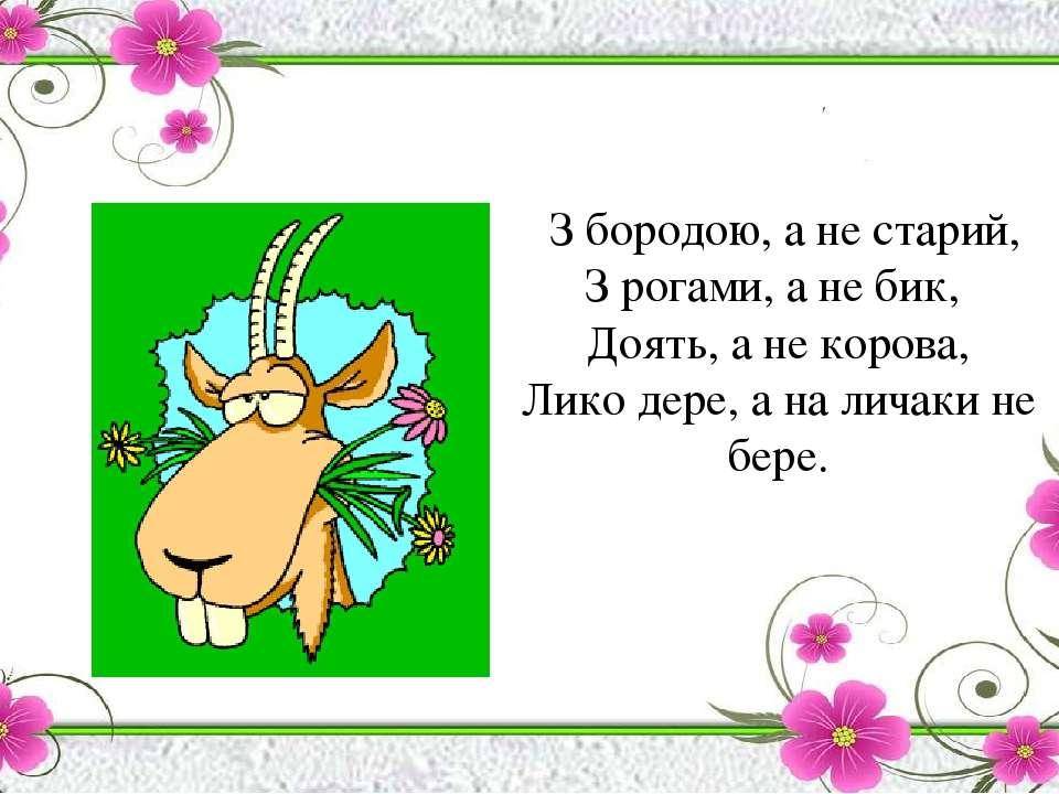 З бородою, а не старий, З рогами, а не бик, Доять, а не корова, Лико дере, а ...