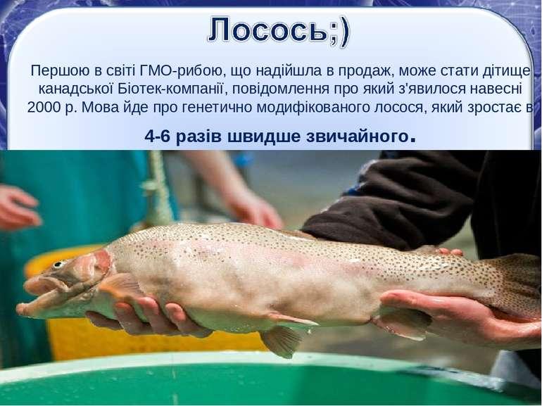 Першою в світіГМО-рибою, що надійшла в продаж, може стати дітище канадської ...