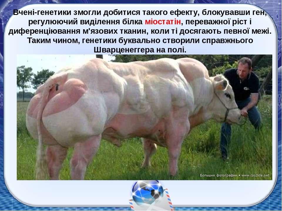 Вчені-генетики змогли добитися такого ефекту, блокувавши ген, регулюючий виді...