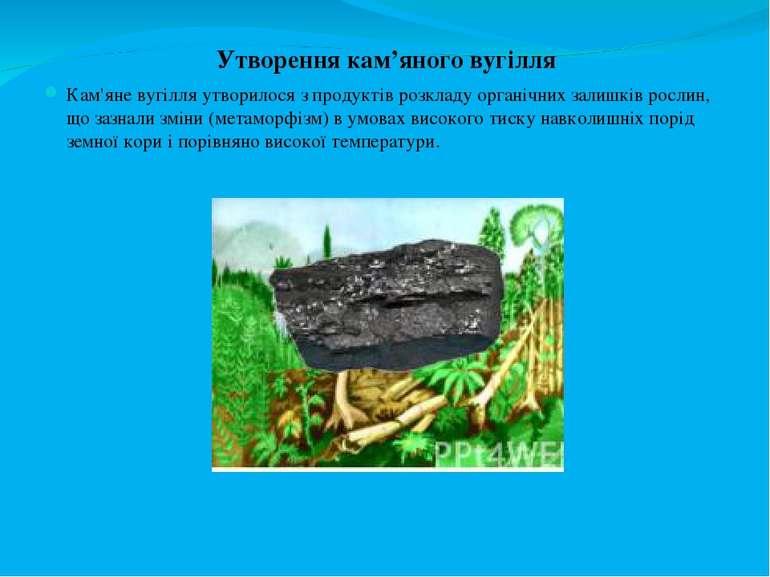 Утворення кам'яного вугілля Кам'яне вугілля утворилося з продуктів розкладу о...